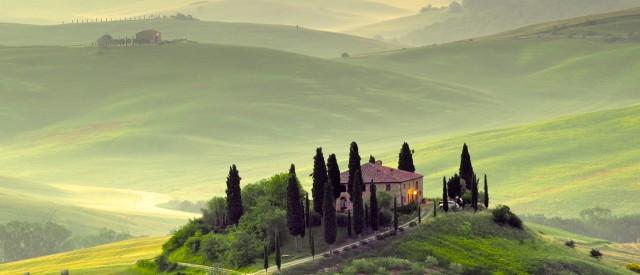 Die zypresse und eine natur feedback bung garten europa - Toskana garten ...