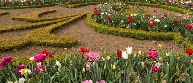 Blumengarten Versailles