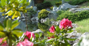 Bonsaizentrum Japan Bonsai, Seeboden