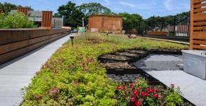 Gärten in der Stadt