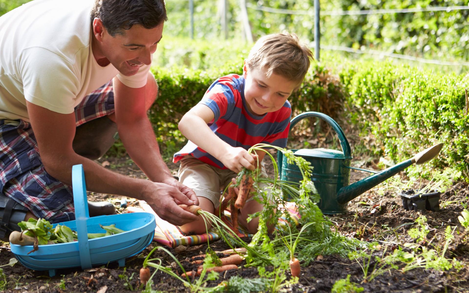 Garten neu gestalten fur kinder  Ein Garten für Kinder | Garten Europa