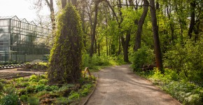 Gartenweg durch einen Botanischer Garten