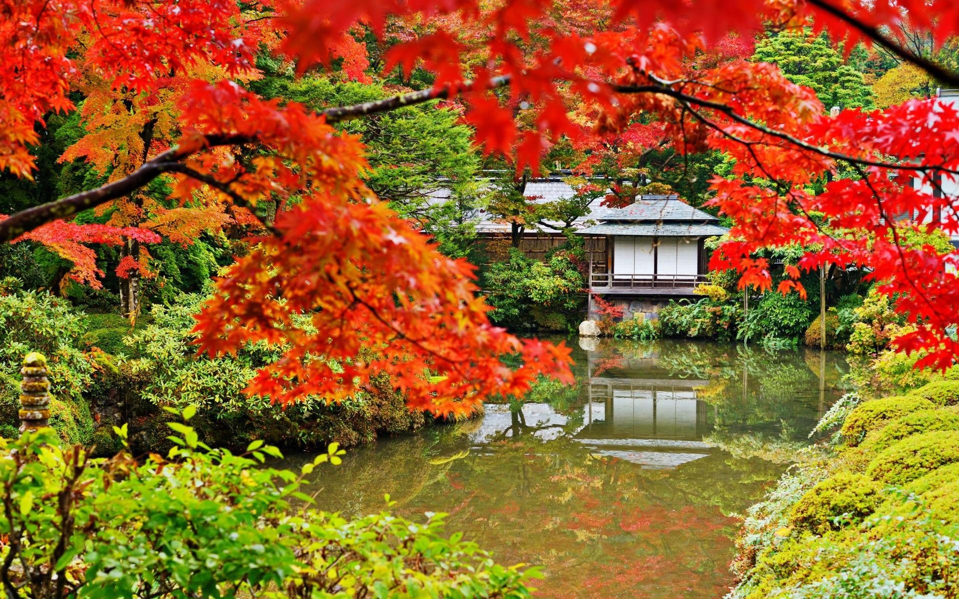 tokyo and gardens on pinterest. Black Bedroom Furniture Sets. Home Design Ideas
