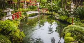 Japanischer Garten mit See und Brücke