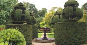Kunstvoller Beschnitt, Renaissancegarten