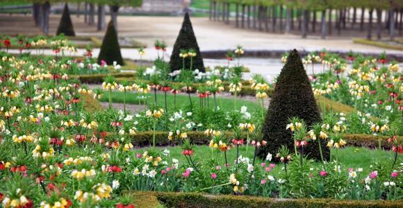Barockgarten Schloss Versailles