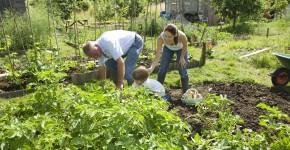 gemeinsame Gartenarbeit