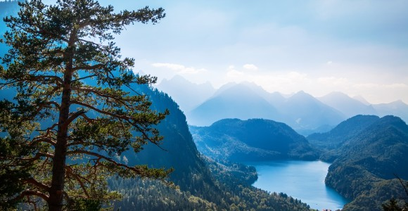 Naturpark Bayerischer Wald