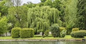 Barockgarten, Schloss Chantilly
