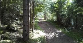 Sagenweg Jesuitengarten