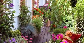 Balkongarten mit Blumen und Kräutern