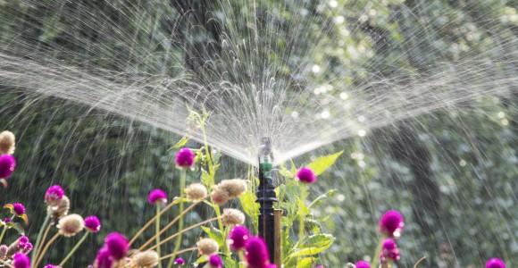 Bewässerungsanlage im Garten