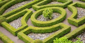Blick auf einen Knotengarten