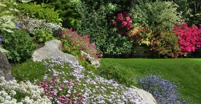 Blühender Steingarten im Frühling