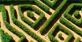 Buchsbaum Labyrinth