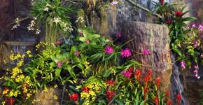 Dekorativer Vertical Garden in einem Park
