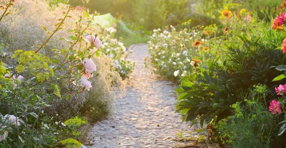 Gartenweg im Naturgarten
