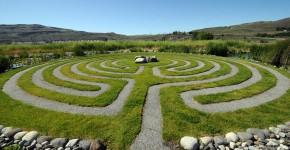 Graslabyrinth
