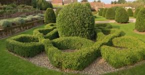 Knotengarten; Kenilworth Castle, Warwickshire