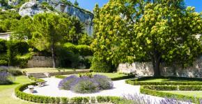 Lavendel im Garten Les Baux de-Provence, Frankreich