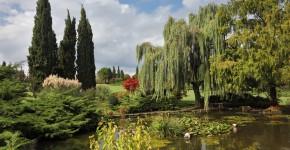See im Englischen Landschaftsgarten