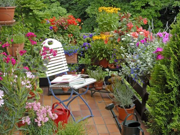 Sommerblumen auf dem Balkon