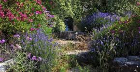 Steingarten, Chianti, Tuscany, Italien