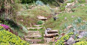 Steingarten im Wald