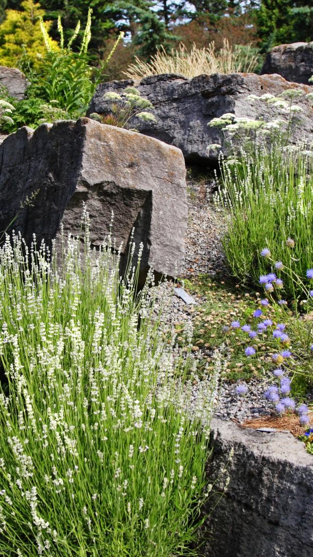 Die Steingärten Garten Europa