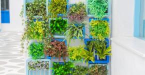 Vertical Garden mit Blumen
