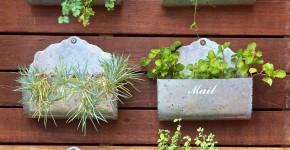 Vertical Garden - Pflanzen in Briefkästen