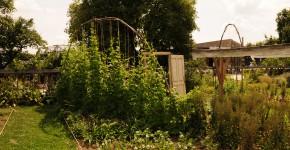Schaugarten Arche Noah