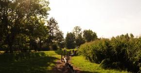 Balancier-Parcours