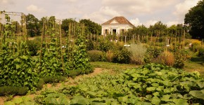 Blick zur Gartenbibliothek im Pavillon