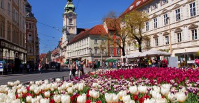 Blumenschmuck, Graz