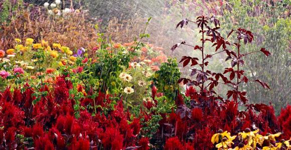 Garten bewässern