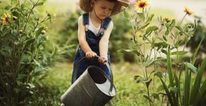 kleiner Gartenhelfer