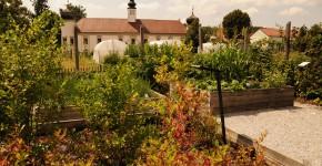 Naschgarten Arche Noah