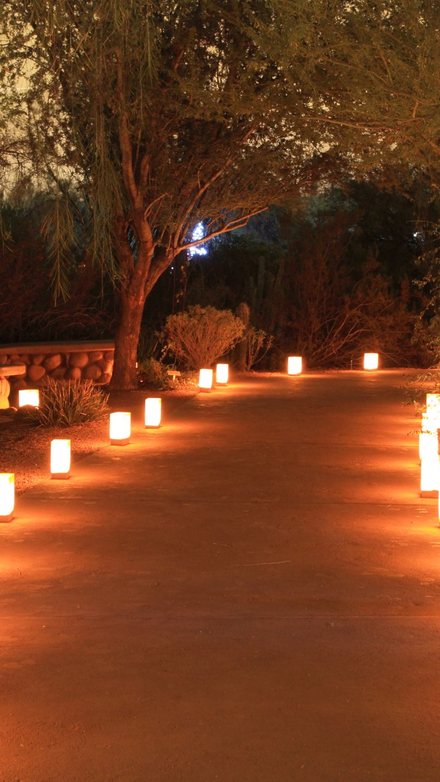 Inszenierung Des Gartens Durch Beleuchtung Garten Europa