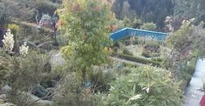 Sulamith - der erste Blick auf den Garten