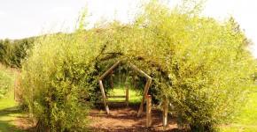 Weidenpavillon
