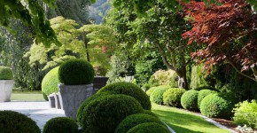 Gartengestaltung, Harmonie im Garten