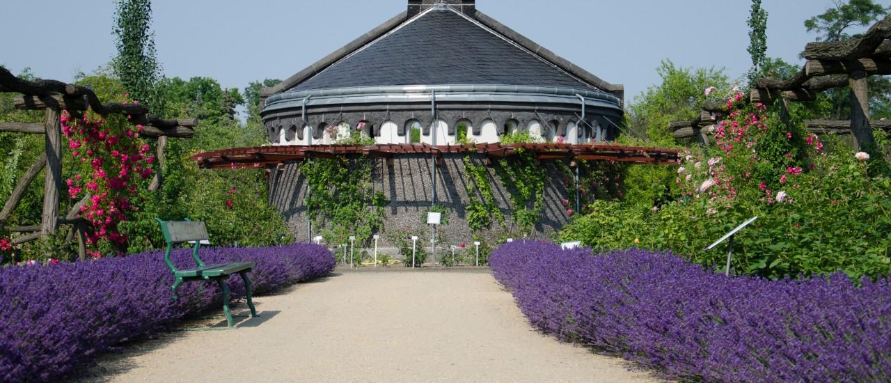 Botanischer Garten Berlin Garten Europa