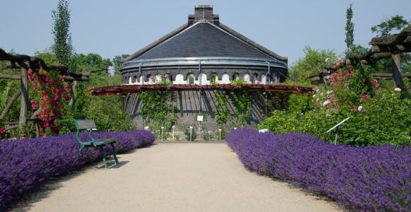 Botanischer Garten, Berlin