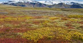 Nationalpark Vatnajökull