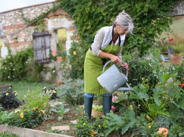 Richtiges Gießen im Garten