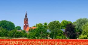 Blumenwiese im Dorf Ragow, Deutschland