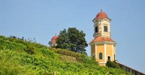 Weingarten, Schloss Stainz, Österreich