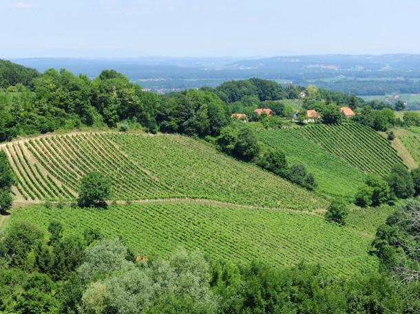 Weingarten Obegg