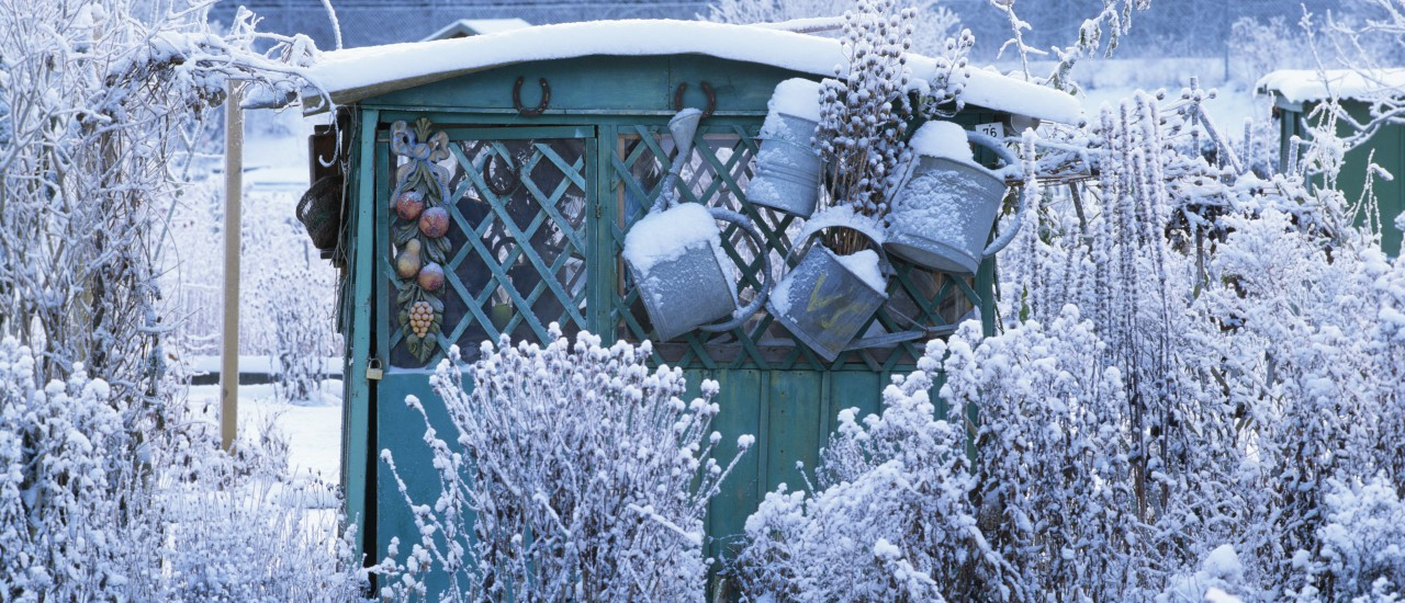 Der Garten Im Januar ? Was Ist Im Ziergarten Zu Tun? - 2014-12-12 ... Garten Januar Was Ziergarten Tun